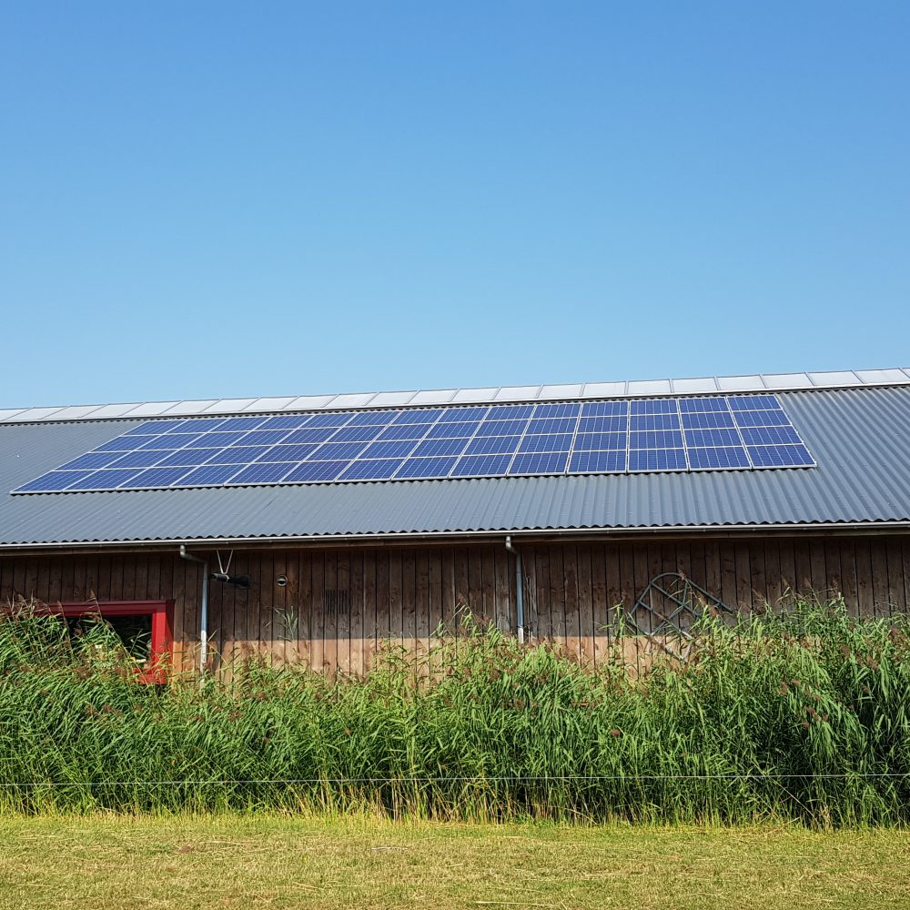 56 zonnepanelen – Surhuizum