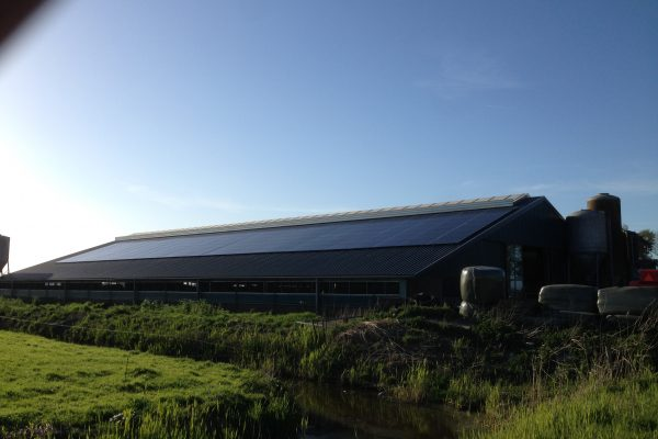 175 zonnepanelen – Westergeest