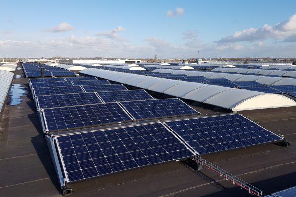 1000 zonnepanelen – Rijnsburg